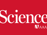 SARS-CoV-2 Mpro inhibitors with antiviral activity in a transgenic mouse model